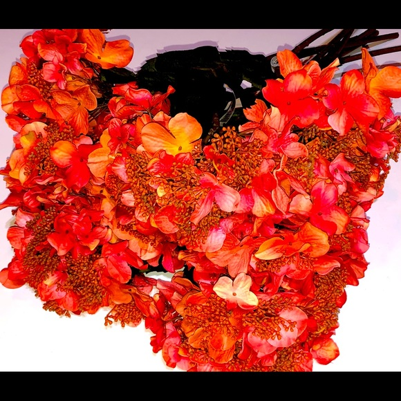 Hydrangeas Pink Orange Long Stem
